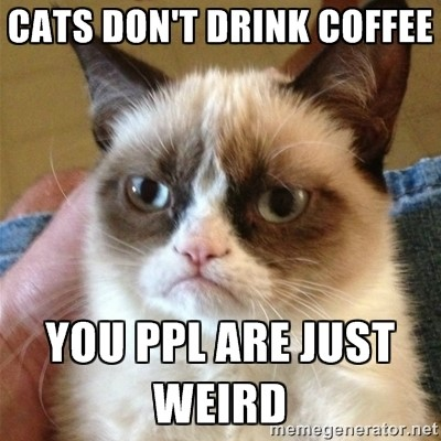 Cats Dont Drink Coffee